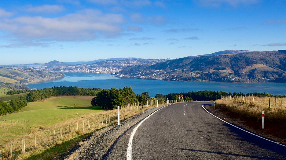 travel guide what city stay zealand