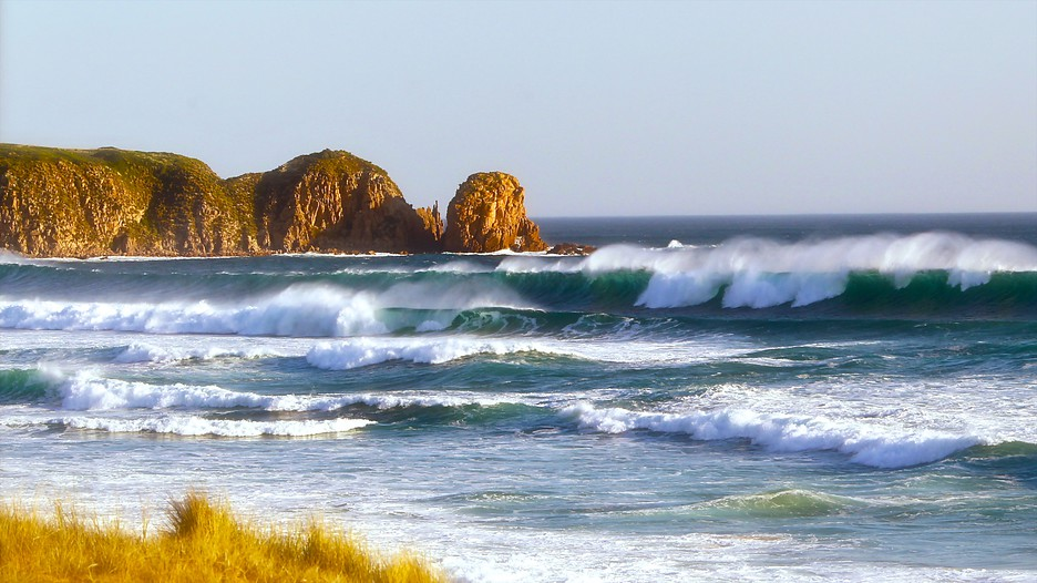 Phillip Island Holidays Cheap Phillip Island Holiday Packages Amp Deals Expedia Com Au