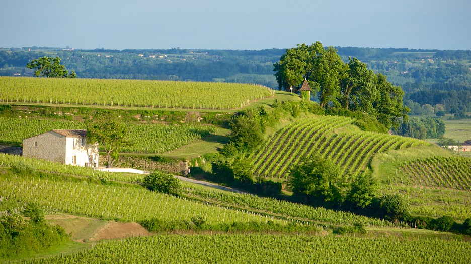 Bordeaux Wine Region Vacations 2017 Package Amp Save Up To