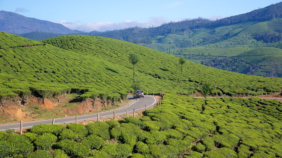 Idukki District Vacations 2017 Package Amp Save Up To 603