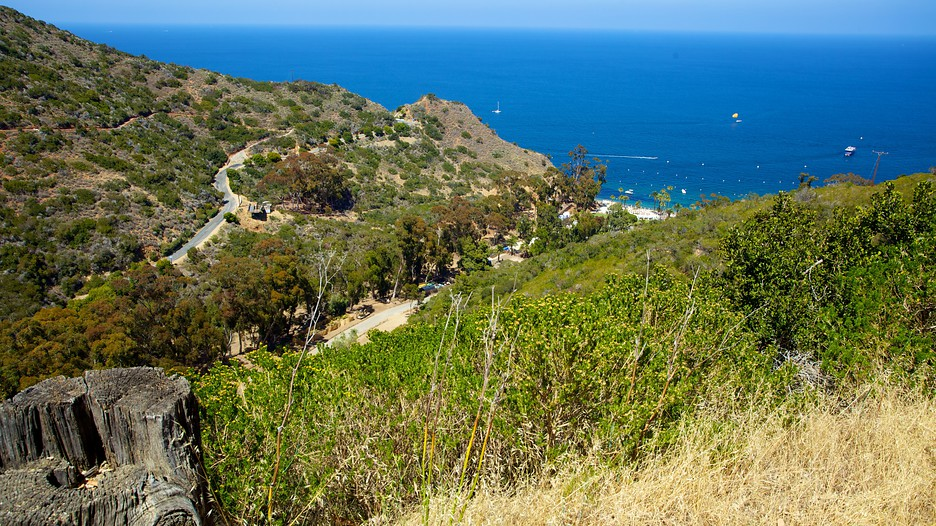Best Hotel Deals Catalina Island