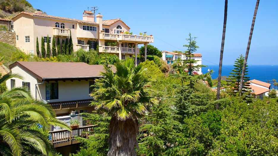 Catalina Island Vacations 2017 Package Save Up To 603