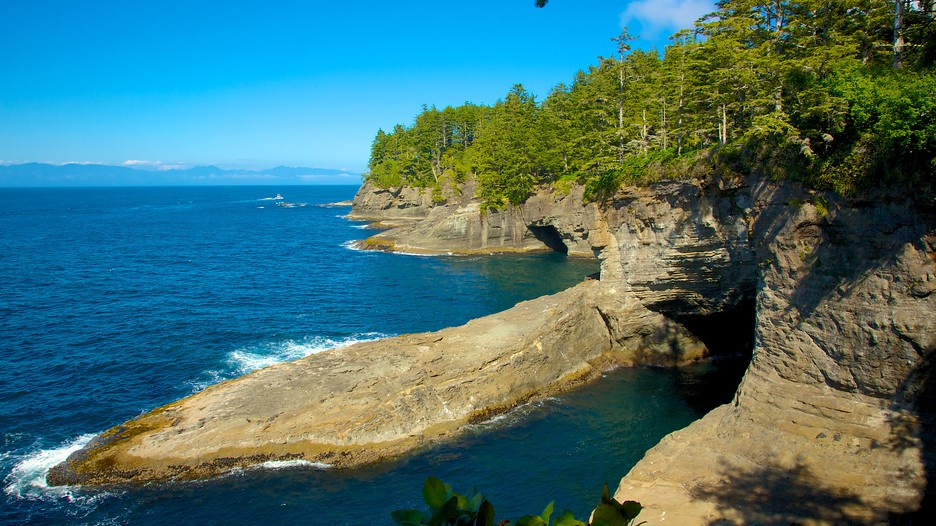 Cape Flattery In Neah Bay Washington Expedia