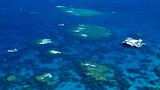 Showing item 6 of 34. Great Barrier Reef - Cairns - Tourism Media