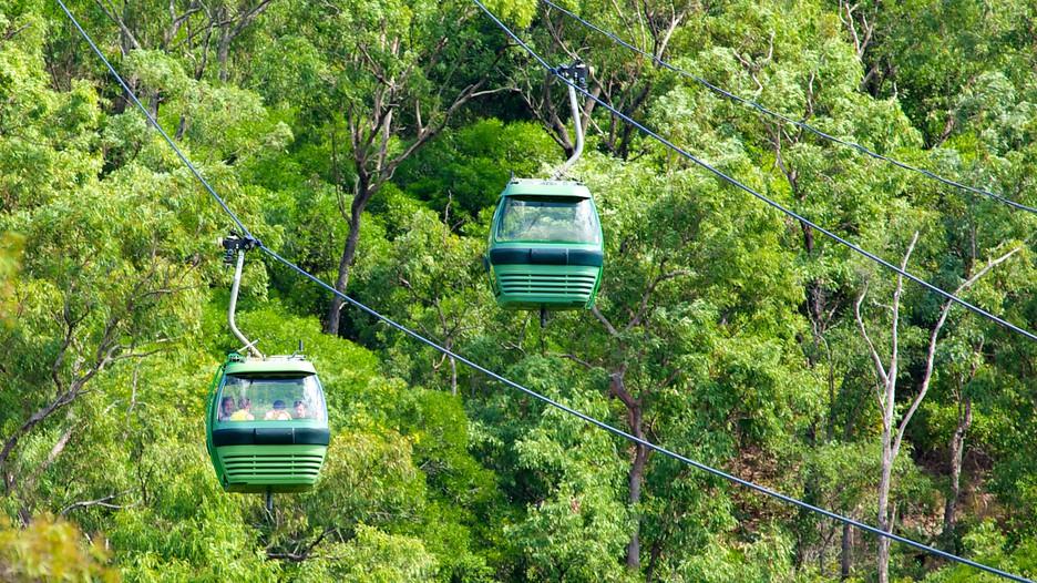 Skyrail rainforest cableway punti di interesse a cairns for Cabine della foresta lacustre