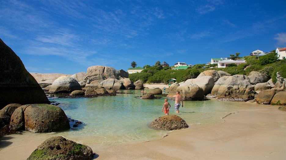 Boulders Beach in Cape Town,  Expedia
