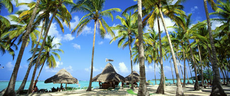 Bavaro Beach Hotels