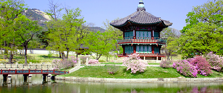 Soeul Korea Shopping Check Out Soeul Korea Shopping Cntravel
