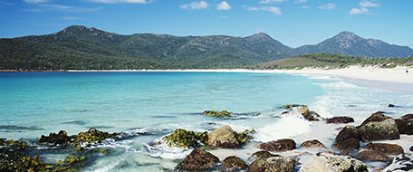 Freycinet hotels