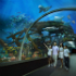 S.E.A. Aquarium�