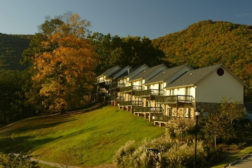 Kingwood Resort