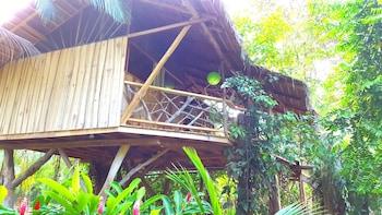 3 Bamboo Lodge