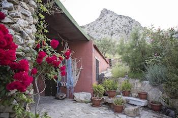 El Refugio de Alamut