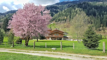 Chalet Alpino Maso del Brenta