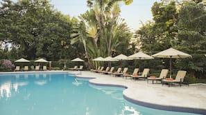Una piscina al aire libre (de 7:30 a 19:30), sombrillas, tumbonas