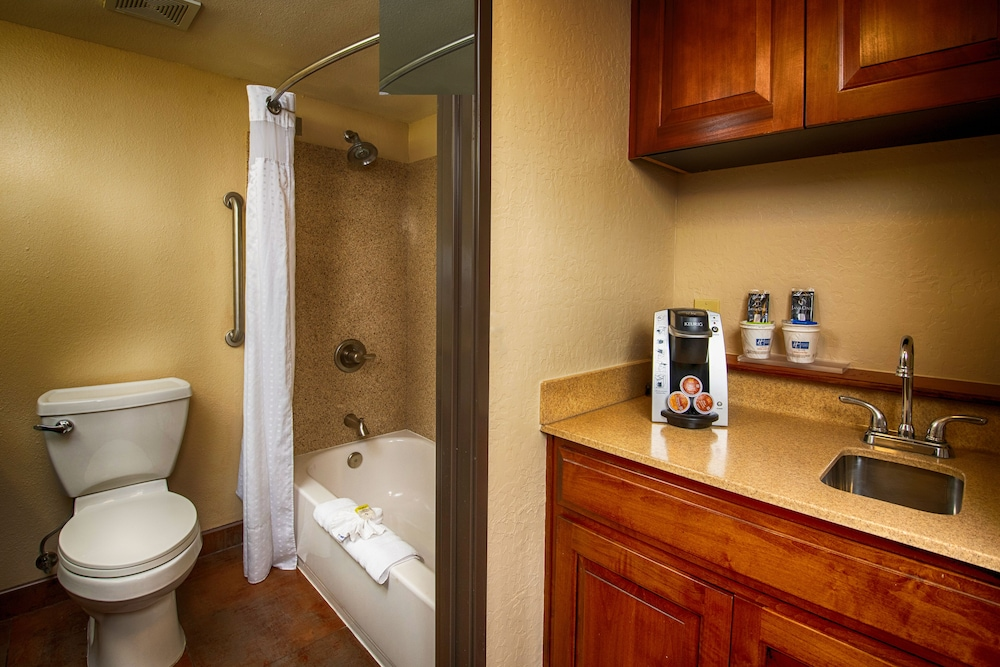 Bathroom, Holiday Inn Express Hotel & Suites Grand Canyon