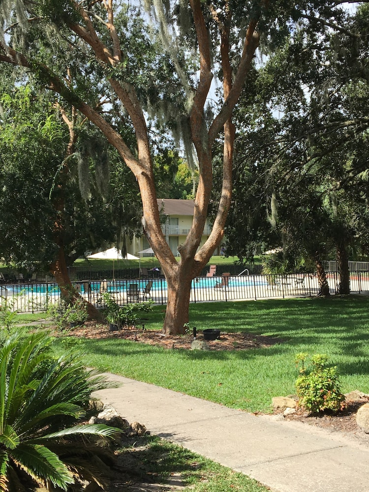 Outdoor Pool, Days Inn by Wyndham Ocala West