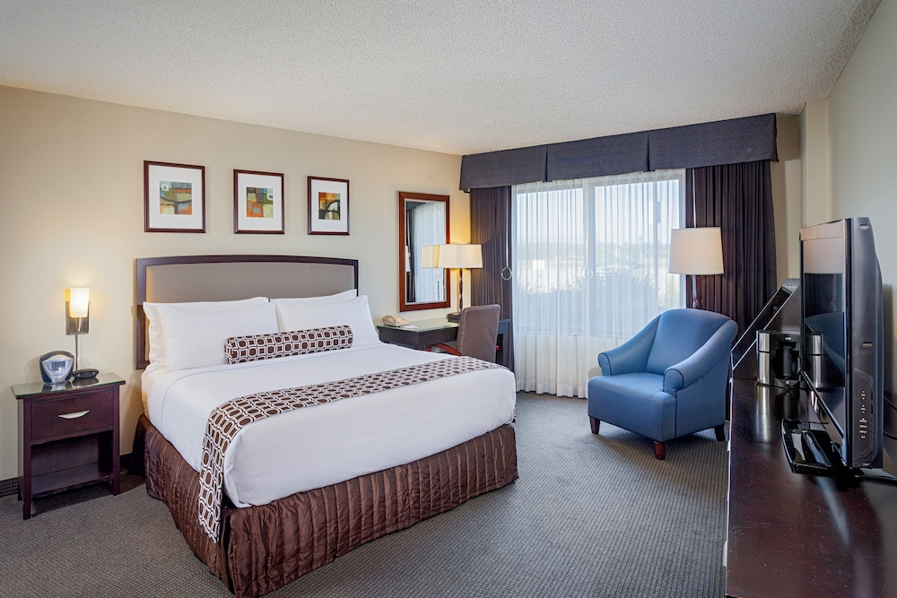 Room, Crowne Plaza Concord / Walnut Creek