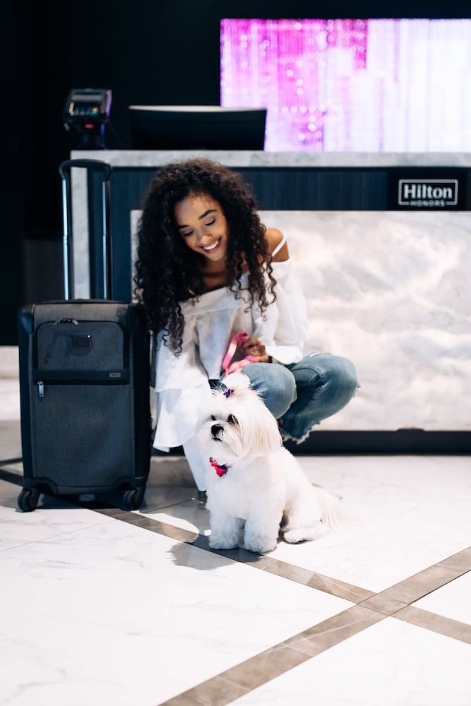 Pet-Friendly, Hilton Miami Downtown