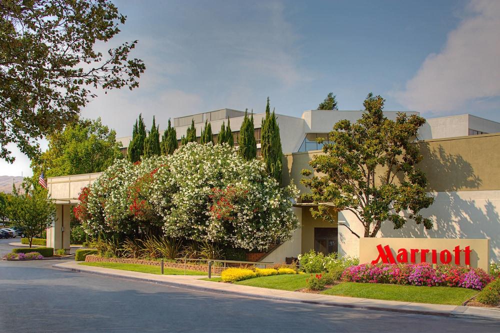 Pleasanton Marriott in Pleasanton, CA   Expedia