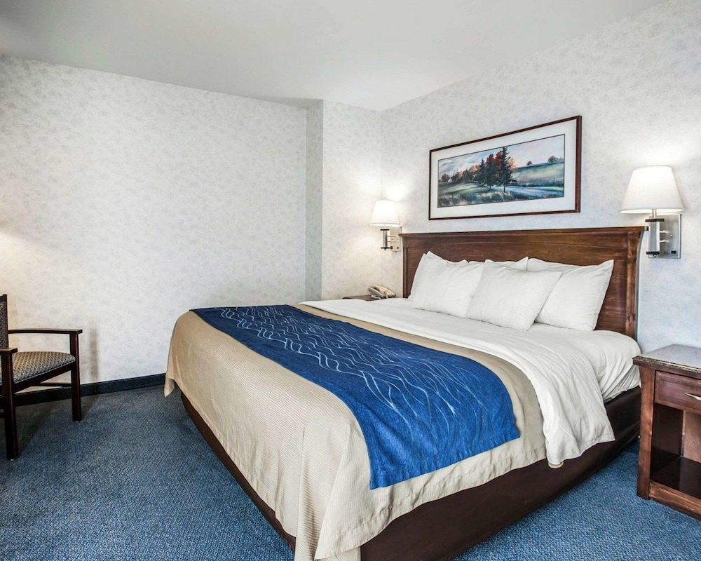 Room, Comfort Inn Bellingham