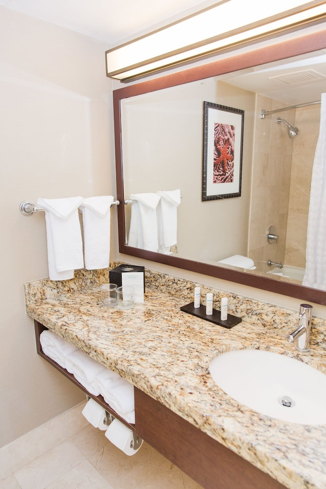 Bathroom, Embassy Suites by Hilton West Palm Beach Central