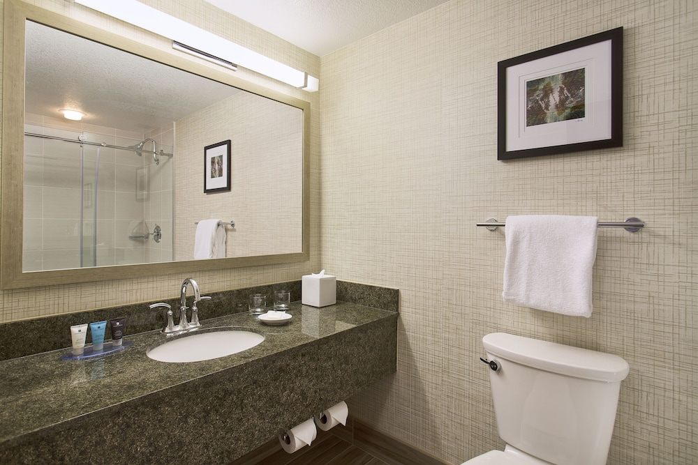 Bathroom, Crowne Plaza Portland-Lake Oswego