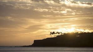 해변에 위치, 일광욕 의자, 비치 파라솔, 비치 타월