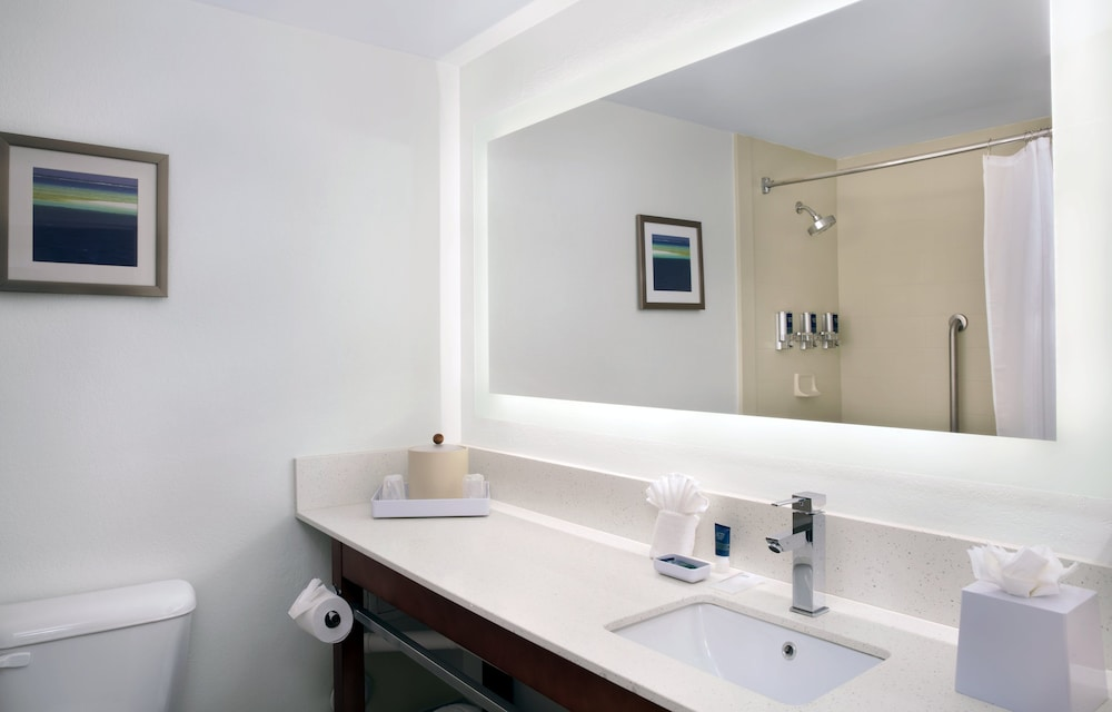 Bathroom, Four Points by Sheraton Fort Lauderdale Airport/Cruise Port