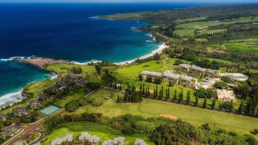 The Ritz-Carlton Maui, Kapalua