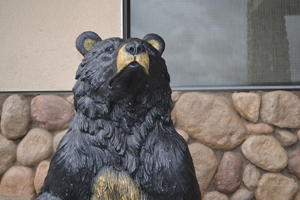 Yosemite Southgate Hotel & Suites in Oakhurst, CA | Expedia