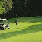 Golfbuggy
