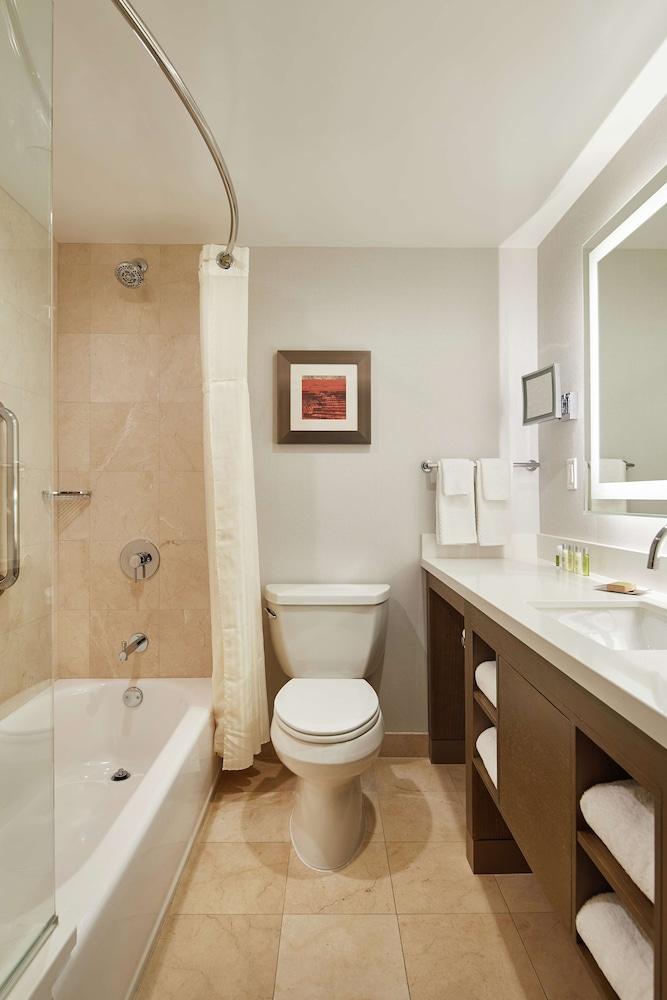 Bathroom, DoubleTree by Hilton Torrance - South Bay