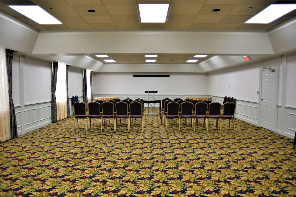 Meeting Facility, Best Western Spring Hill Inn & Suites