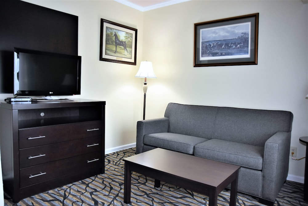 Room, Best Western Spring Hill Inn & Suites