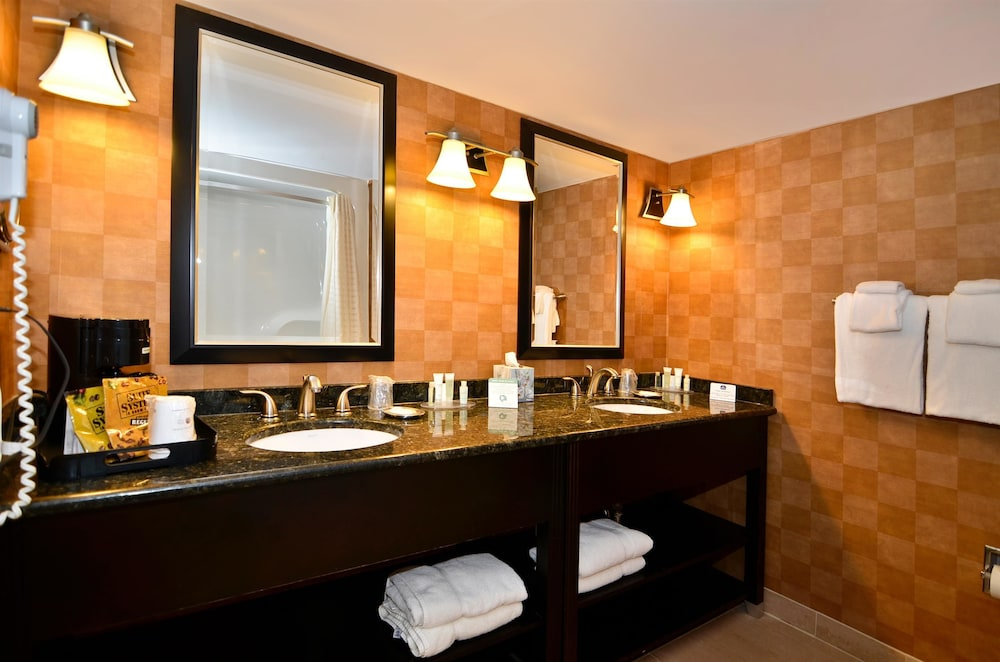 Bathroom, Best Western Plus BWI Airport Hotel / Arundel Mills
