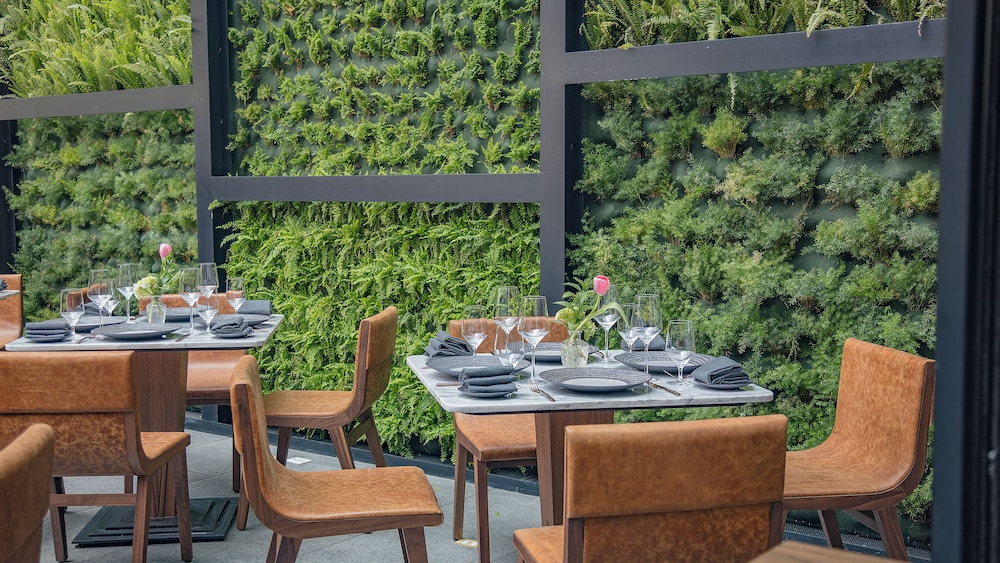 Outdoor Dining, InterContinental Presidente Mexico City, an IHG Hotel