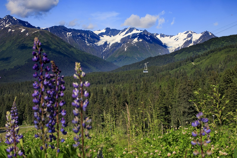 Hiking, Alyeska Resort