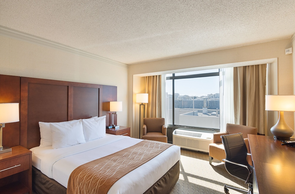 Room, Comfort Inn by the Bay