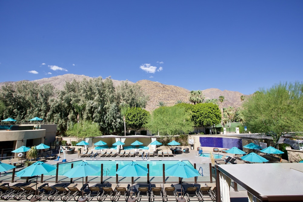 Pool, Hyatt Palm Springs