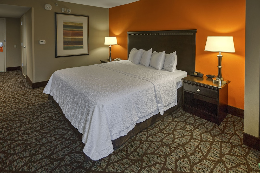 Room, Hampton Inn Asheville-Tunnel Rd.