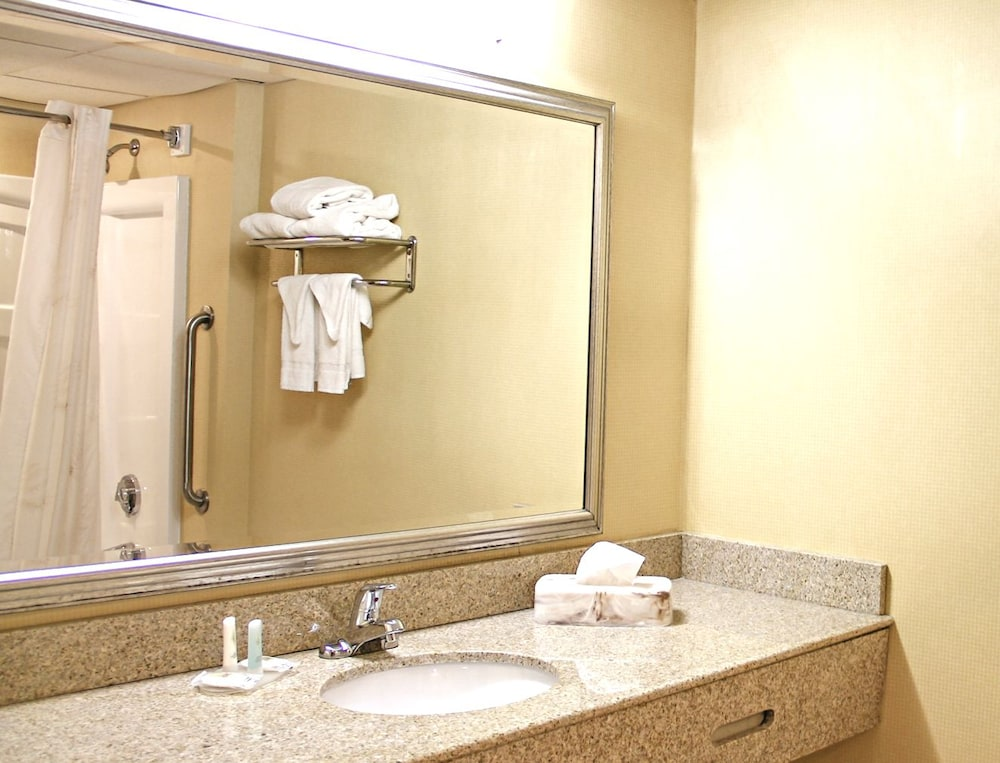 Bathroom, Comfort Inn Carrier Circle