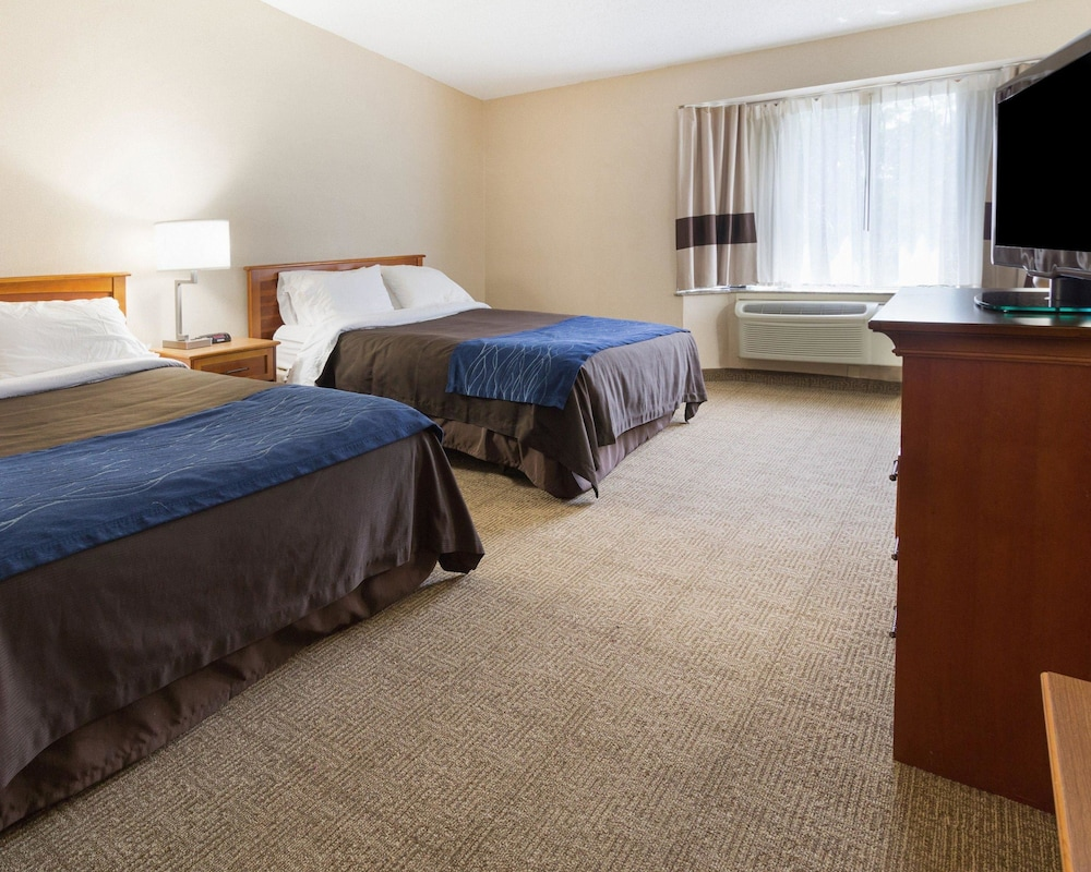 Room, Comfort Inn Carrier Circle