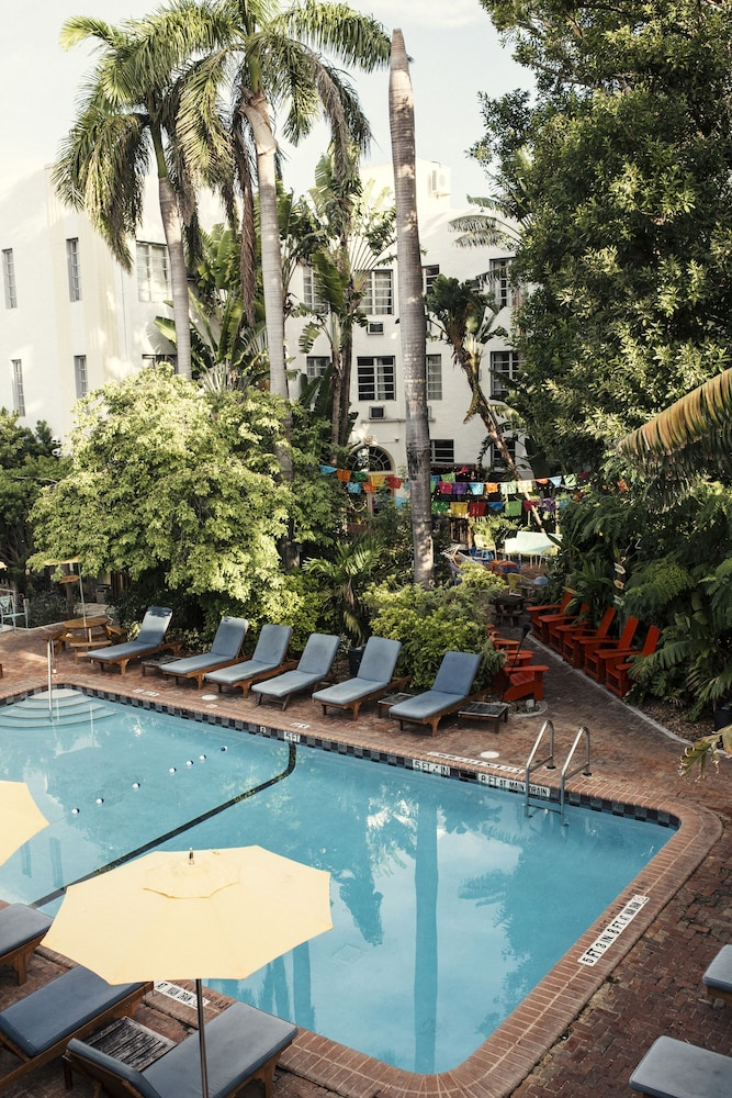 Outdoor Pool, Freehand Miami