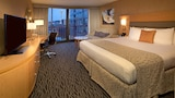 Warwick Seattle - Seattle Hotels