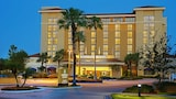 Embassy Suites by Hilton Orlando International Dr Conv Ctr - Orlando Hotels