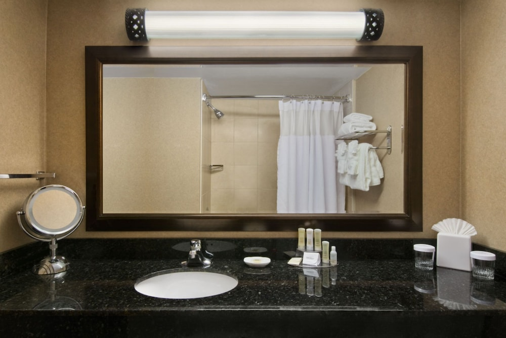 Bathroom, Crowne Plaza Denver Airport Convention Ctr, an IHG Hotel
