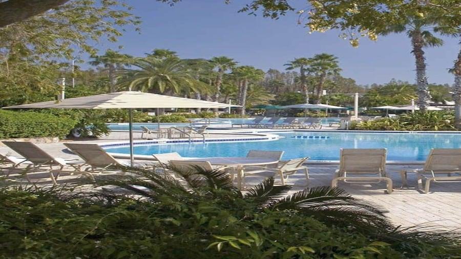 Saddlebrook Golf Resort and Spa