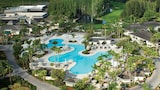 Saddlebrook Resort and Spa - Wesley Chapel Hotels