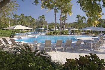 Saddlebrook Resort and Spa